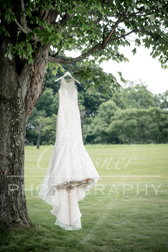 Johnstown_Wedding_Photographers_Glessner_Photography_6-9-2018