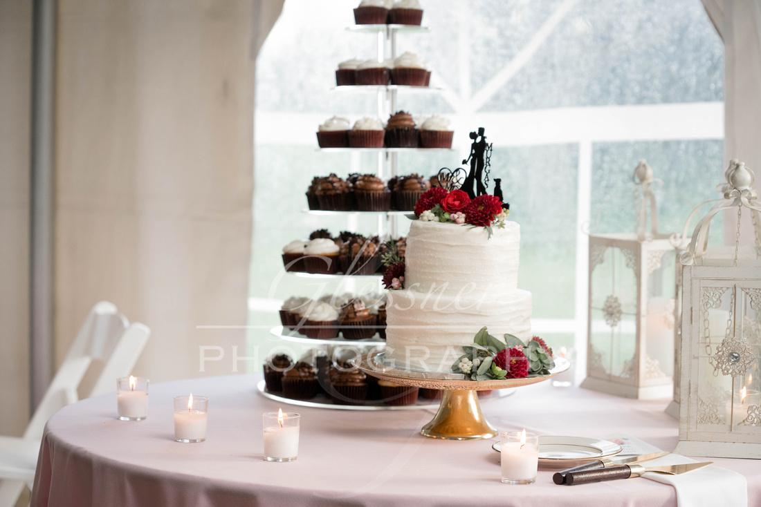 Johnstown PA Wedding Photographers David & Aly 10-6-2018-885