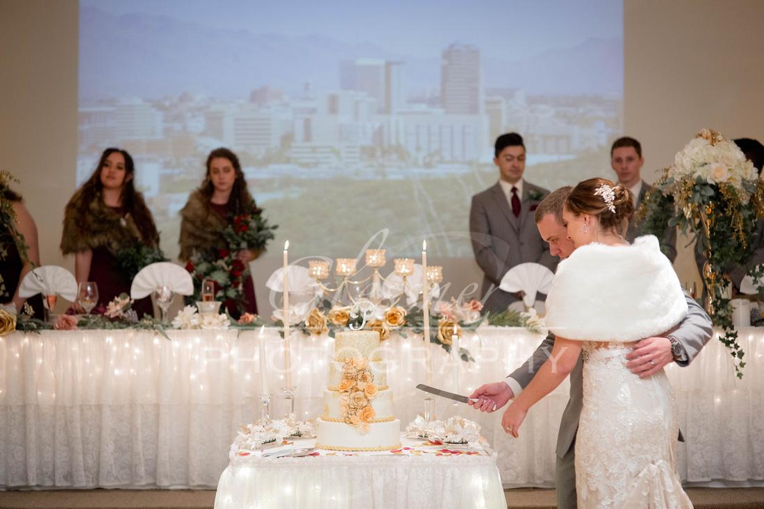 Wedding_Photography_Johnstown_Wedding_Photographers 1-5-2019-286
