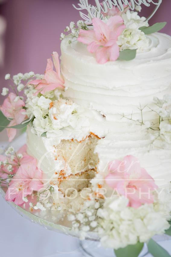 Wedding_Photography_Chimney_Rocks_Hollidaysburg_PA_5-30-20-1304