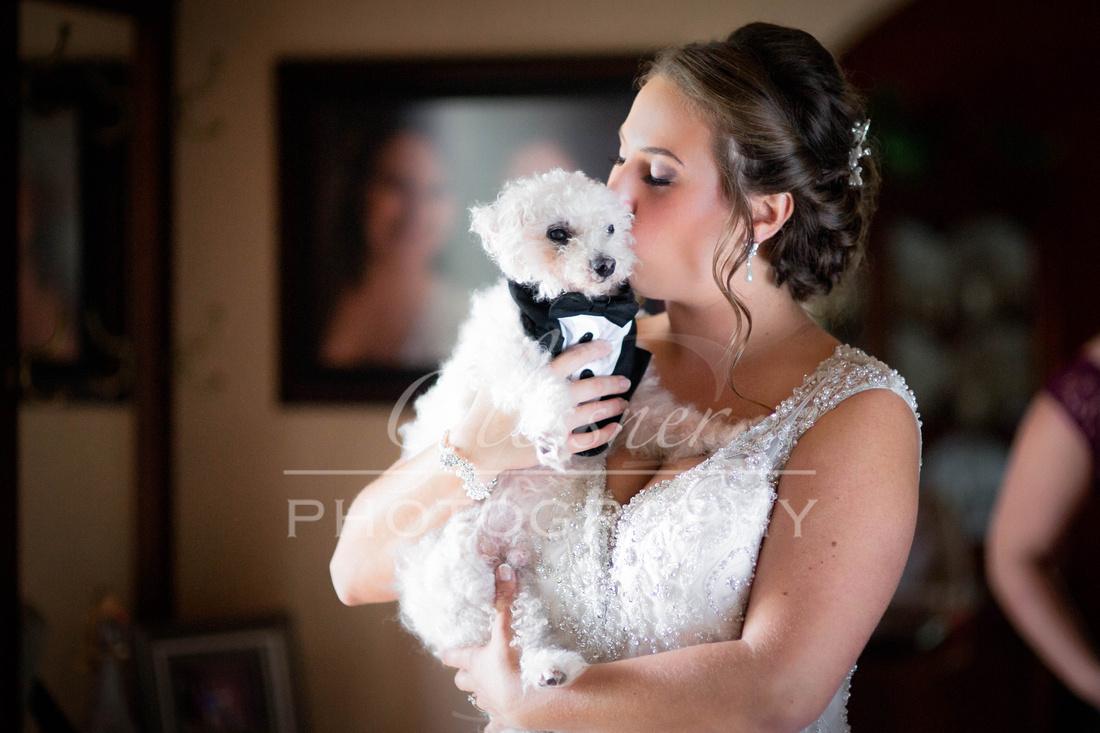 Davidsville_PA_Wedding_Photographers-1095